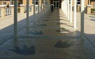 Stamped Concrete High School Custom Paw Prints