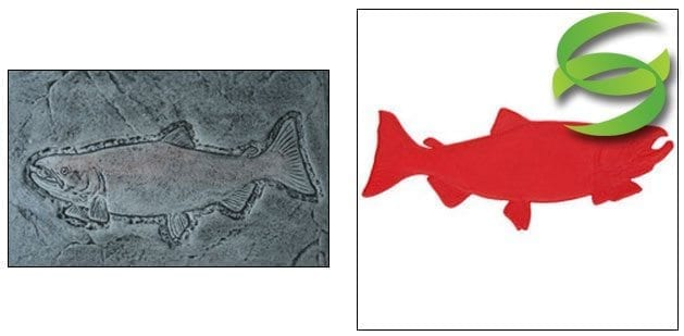 Aquatic Series Salmon Head Sculpted Concrete Stamping Mats