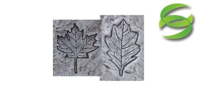 Garden Series Set of 2 Leaves Concrete Stamping Mats