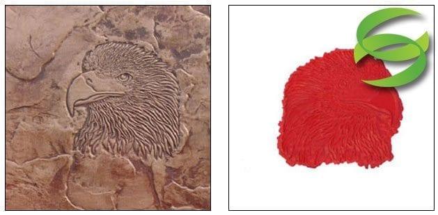 Wildlife Series Eagle Head