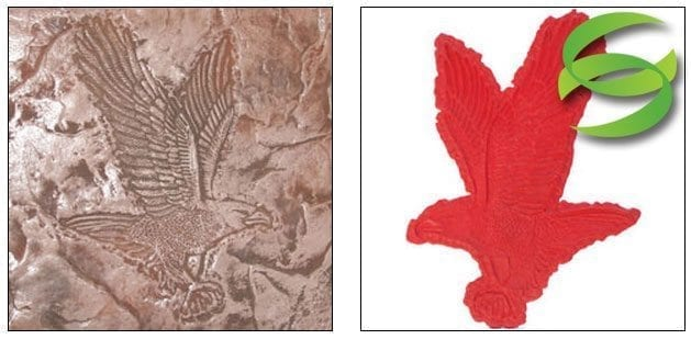 Wildlife Series Eagle in Flight Concrete Stamp Mat