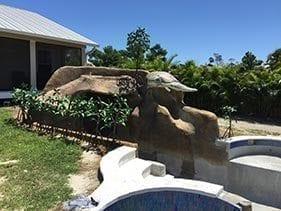 Jungle Carved Rock Looking Pool Slide