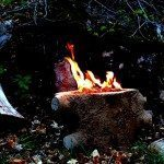 Natural Looking Concrete Wood Stump Fire Pit