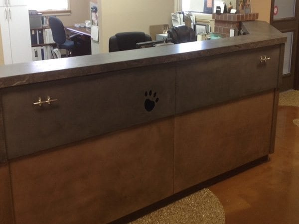 Veterinarian's Office Gray Concrete Reception Desk