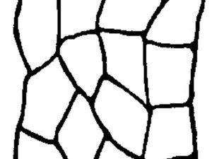 Adhesive Flagstone Stencil by SureCrete